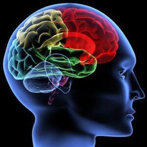 Dallas Brain Injury Lawyer