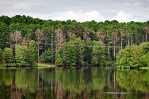 Power Line Electrocution on Lake